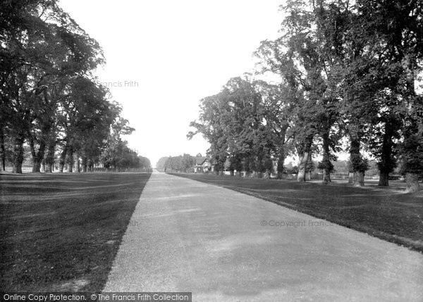 Photo of Windsor, Great Park 1937