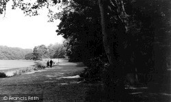 Windsor, Great Park c.1965