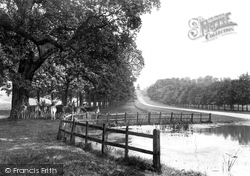 Windsor, Great Park, Long Walk 1914