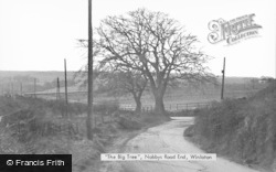 Winlaton, The Big Tree, Nobbys Road End c.1955