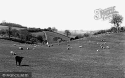 Winsham, Midnell Farm c.1950