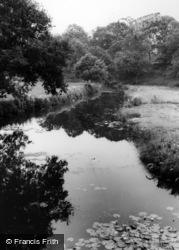The River c.1965, Wisborough Green