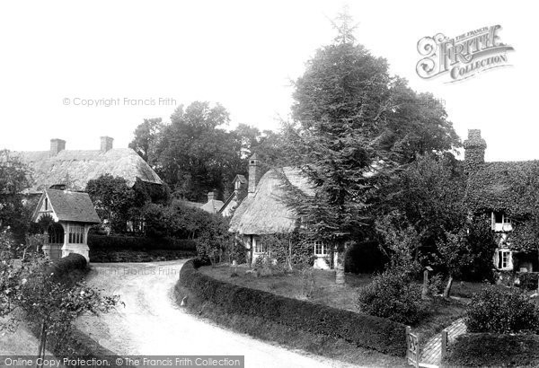 Photo of Witchampton, Village 1904