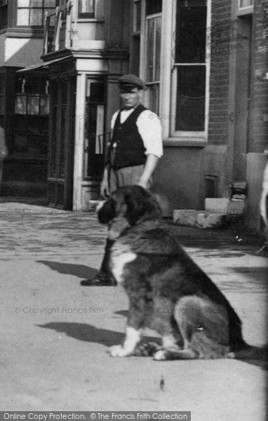 Photo of Witham, Man And Dog In Newland Street 1900