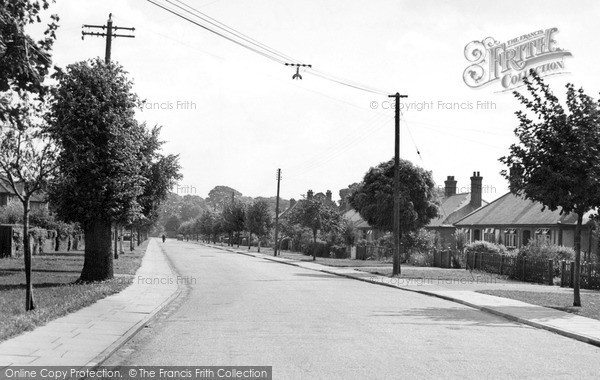 Photo of Witham, The Avenue c.1950
