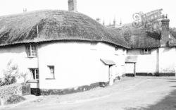 Old Black Dog Inn c.1955, Witheridge