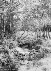 The Stream c.1965, Witheridge