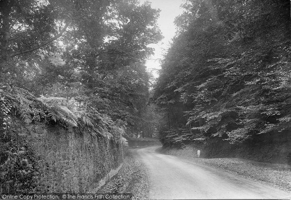 Photo of Witley, Brook Rocks 1921
