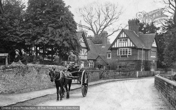 Photo of Witley, Horse And Trap 1906