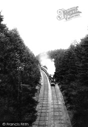 L & S W Express In The Pine Woods 1908, Witley
