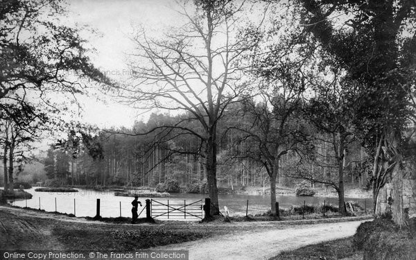 Photo of Witley, Sweetwater 1906