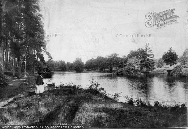 Photo of Witley, Sweetwater Pond 1906