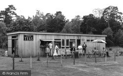 Witley, The National Trust Tea Rooms c.1960