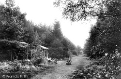 Green Walk, London Open Air Sanatorium 1910, Wokingham