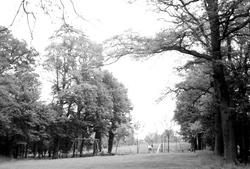Wokingham, Joel Park c.1955