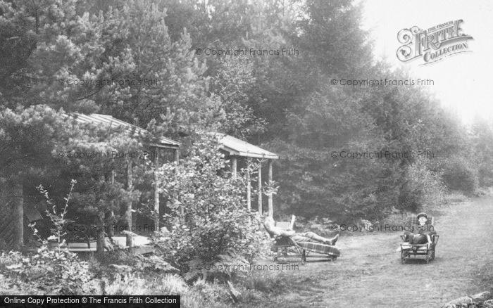 Photo of Wokingham, London Open Air Sanatorium,  The Garden 1910