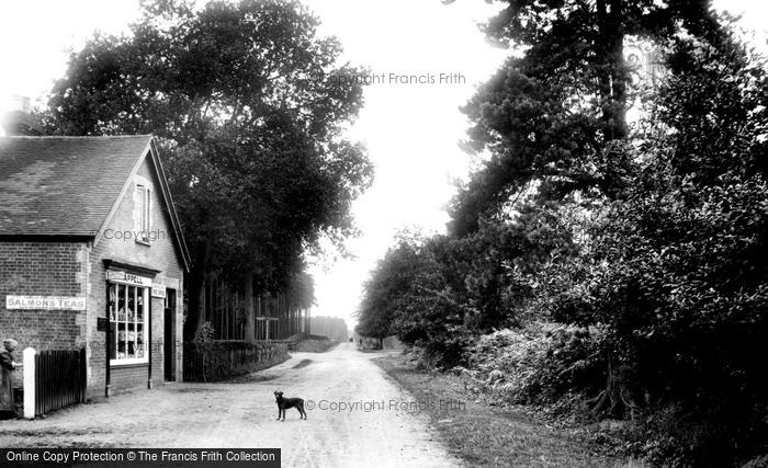Photo of Wokingham, Nine Mile Ride Post Office 1909