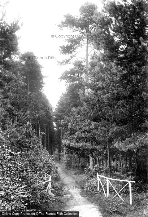 Photo of Wokingham, Pinewood Avenue, London Open Air Sanatorium 1910