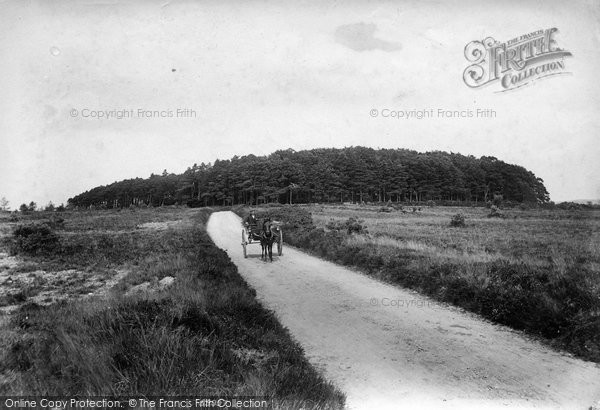 Photo of Woodbury, Castle 1906