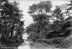 Castle 1906, Woodbury