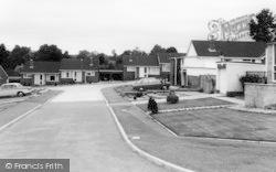 Longmeadow c.1965, Woodbury