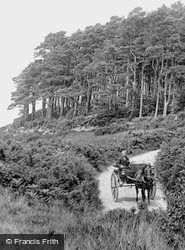 The Common 1906, Woodbury