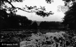 Woodford Green, Higham's Park Lake 1903