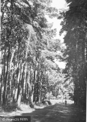 The Spa Grounds c.1955, Woodhall Spa