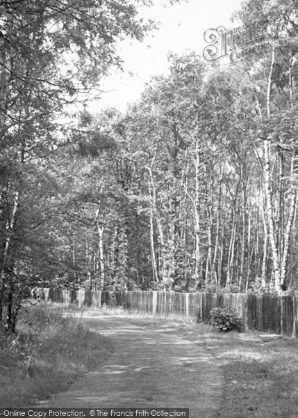 Photo of Woodhall Spa, The Spa Grounds c.1955