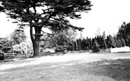 Woodmansterne photo
