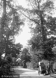 Woodmansterne, The Street c.1900