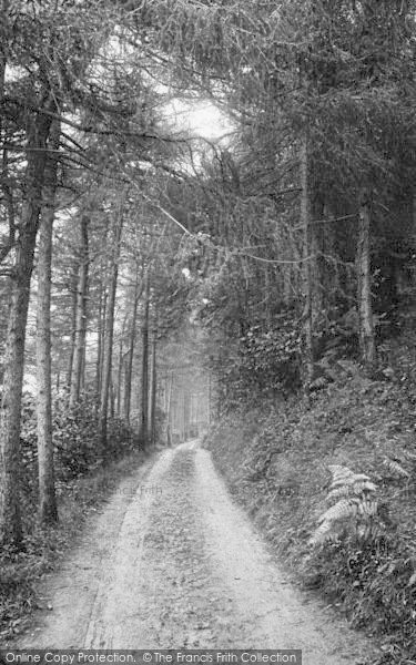 Photo of Woody Bay, In The Pines 1908