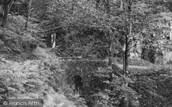 Woody Bay, Inkerman Bridge 1908