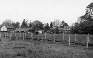 Wookey, general view c1955