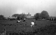 Wool, Wool Bridge And Manor Hotel c.1950