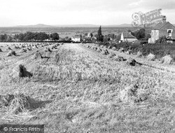 View From The Prince Of Wales c.1960, Woolavington