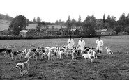 Wormelow, the South Hereford Fox Hounds c1960