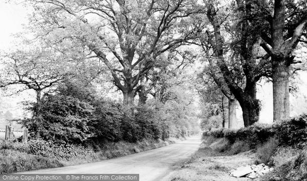 Photo of Wormley, Church Lane c.1955