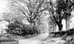 Wormley, Church Lane c.1955