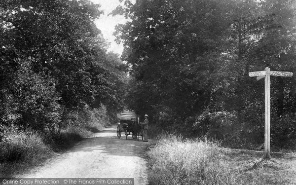Photo of Worplesdon, Burden Shot Hill 1904