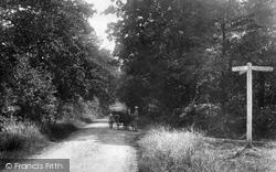 Burden Shot Hill 1904, Worplesdon