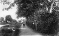 Worplesdon photo
