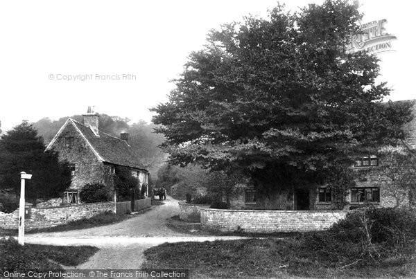 Photo of Wortley, 1904