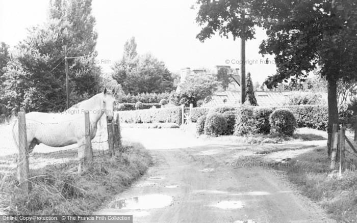 Photo of Wraysbury, Magna Carta Lane c.1955