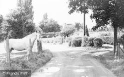 Wraysbury, Magna Carta Lane c.1955