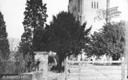 Writtle, All Saints Church c.1955