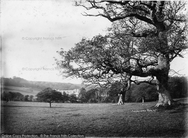 Photo of Wroxall, Appuldurcombe Park c.1880