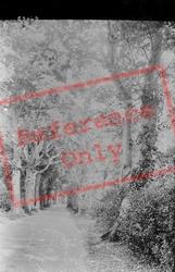 Beech Avenue 1934, Wroxham