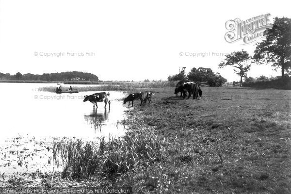 Photo of Wroxham, The Broads 1902