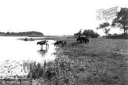Wroxham, The Broads 1902